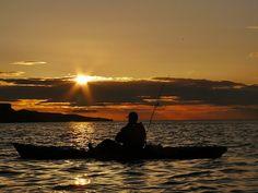 Bass Fishing Facts and More… Bass Fishing Tips, Gone Fishing, Best Fishing, Kayak Fishing, Sea Angling, Tennessee Valley Authority, Australian Bass, Bass Boat, Largemouth Bass