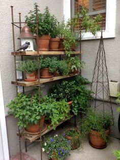 Balcony Herb Gardens, Small Herb Gardens, Balcony Gardening, Jardin Vertical Diy, Vertical Garden Diy, Small Garden Inspiration, Garden Ideas, Patio Ideas, Backyard Ideas