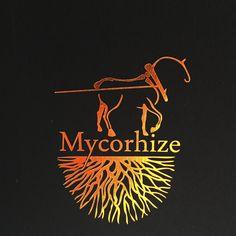 Mycorhize et vigne, pourquoi se laisser enherber ?  http://www.spiritueuxmagazine.com/2015/07/pedologie-la-mycorhize-pour-les-nuls.html