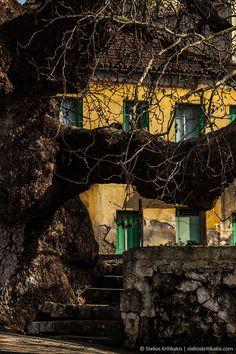 Agios Floros, Messinia, Greece