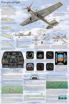Principles of Flight Aerodynamic Educational Science Chart Poster Aviation Training, Pilot Training, Aviation World, Aviation Art, Aviation Careers, Science Chart, Cessna 172, Aircraft Maintenance, Vintage Airplanes