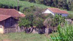 RARIDADES SERTANEJAS (COLETANEA) POÇOS DE CALDAS (MG) à DIVINOLANDIA (SP)  AH .... TENS VONTADE DE TER UM QUE FAS propagandas DE SUA EMPRESA? AAAAAAA FALE COMIGO! www.blogger.com ...SKYPE... http://www.orkut.com.br/Main#Home Pinterest.com... reddit... Tumblr...Linkedim..http://vpmcowboydo.blogspot.com.br/ valterpotenciamaxima28@gmail.com.. hi 5.. VK..Digg