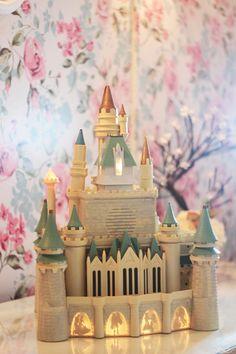 Minhas_miniaturas_e_castelo_da_Disney_12