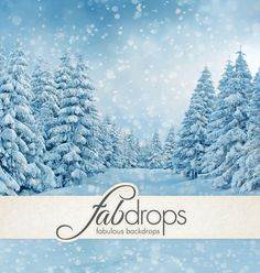 Winter Scenic Vinyl Photography Backdrop  Frozen by FabDrops