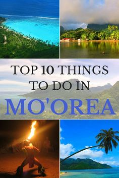 Discover the top things to do in Moorea Island in French Polynesia!