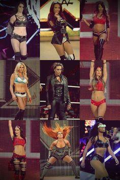 Paige Sasha Banks Alicia Fox Charlotte Tamina Snuka Nikki Bella Brie Bella Becky Lynch & Naomi