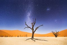 """ A night at Deadvlei"" - Beth McCarley - National Geographic Traveler Photo Contest"