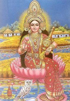 Lakshmi, blessings of prosperity to all!