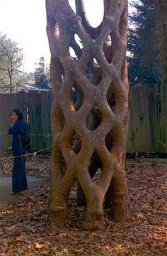 Axel Erlandson tree circus, tree grafting