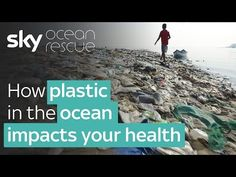 Epic Documentary Shows Exactly What's Wrong With Our Obsession With Plastic (VIDEO) | One Green Planet