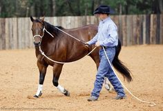 This exercise will help your horse become attentive and relaxed while being led.