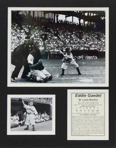 Eddie Gaedel 11' x 14' Unframed Matted Photo Collage by Legends Never Die, Inc. *** For more information, visit image link. (This is an affiliate link) #Plaques