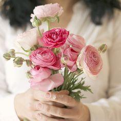 bring me flowers .. X ღɱɧღ