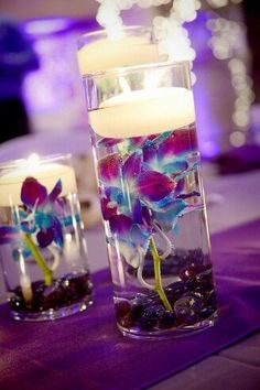1000 Images About Wedding Ideas On Pinterest Blue Orchids Orchid Centerpieces And