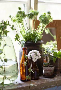 DECORAR CON FLORES Y PLANTAS   Decorar tu casa es facilisimo.com