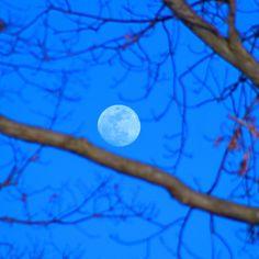 Moonrise - Smithville Lake, MO 03/16