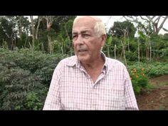 Cosechando lo que no se puede sembrar (la siembra de Don Luis Soto)
