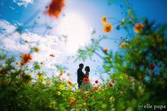 万博公園と飛行機*ロケーション後撮り | *elle pupa blog* Couple Photography, Engagement Photography, Wedding Photography, Diy Wedding Reception, Couple Shots, Pregnant Couple, Sea Photo, Wedding Images, Engagement Pictures