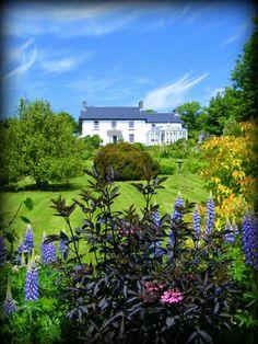 Bro Meigan Gardens in Pembrokeshire