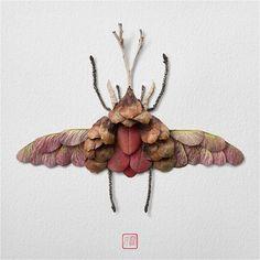 "Natura Insects Series3: Autumn Special ""kabutomushi"" (5/9)    #nature #insect #colour #flower #arrangement #butterfliesofinstagram #ant #kabutomushi #twigbug #creative #creativity #design #designer #MTL #Montreal #Japan #Tokyo #art #craft #autumn"