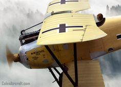 Albatros D.III Oeffag 253 Detail by Ron Cole | Flickr - Photo Sharing!