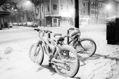 Snow bikes in Inman Square, #CambMA #CambridgeMA