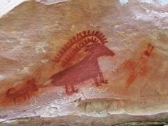 'big horn sheep' - Dinosaur National Monument , Utah
