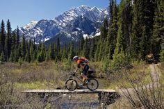Stunning single track #mtb #cycling