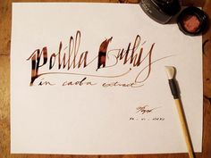 Polilla Luthis by PeGGO, via Flickr