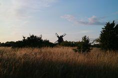 Gotland, Sweden #Sandqvist #Sweden #Nature #Gotland
