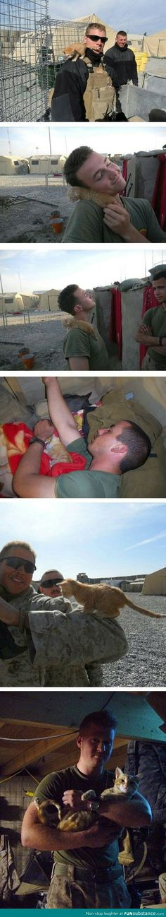 Marines + kittens. OMG!! This is too cute!! (Note, these are marines, not army men. To the person who said otherwise that I pinned this from)
