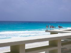 Cancun - 2014