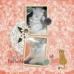 FLOWER MEOWER by Chére Kaye Designs Pattern Paper, Fur Babies, Cat Lovers, Whimsical, How To Draw Hands, Crafty, Frame, Flowers, Fun