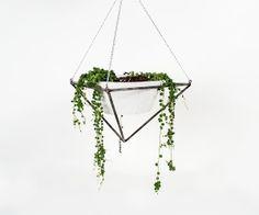 anthology-mag-blog-planters-from-KKDW-1