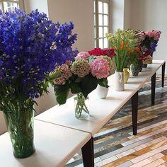 Singular arrangements in varying vases at the Céline showroom in Paris.