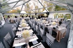 A passion for parties. Photo: Bob Mutton Party and Tent Rental