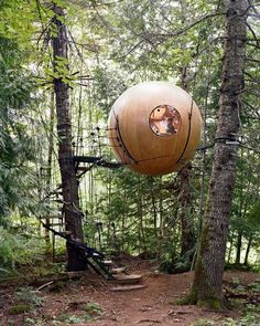 Usually, a tree house is built as simple as possible. The most important part is it is safe to climb and also can give some comforting place for everyone inside. But these ideas of tree house designs are so unique you barely see them. Glamping, Cool Tree Houses, Tree House Designs, Unique Trees, Stuff To Do, Cool Stuff, Cool Things, Round House, In The Tree