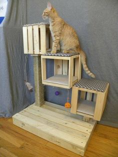 Cats Toys Ideas - Kitten Cubes Cat Condo von TheHeftyCatCondo auf Etsy - Ideal toys for small cats Diy Jouet Pour Chat, Diy Cat Tree, Ideal Toys, Cat Shelves, Cat Playground, Cats For Sale, Super Cat, Cat Room, Cat Condo