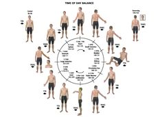 Your muscles that correspond to your acupuncture meridians. For more information, please visit www.catherinecarrigan.com