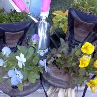 I sent another pair of my boots out to pasture today. They will log no… :: Hometalk
