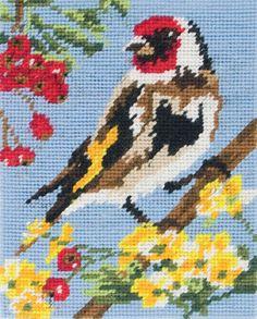 Anchor Starters Goldfinch Tapestry Kit for sale online Cross Stitch Bird, Cross Stitch Animals, Cross Stitch Flowers, Cross Stitch Designs, Cross Stitching, Cross Stitch Embroidery, Hand Embroidery, Cross Stitch Patterns, Tapestry Kits