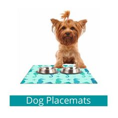 dog placemats, pet products, afeimages