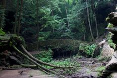 Arched Bridge on the Old Man's Cave trail, Hocking Hills State Park, Ohio.