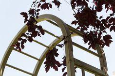 Elite Arch from Grange
