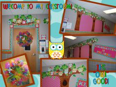 owl classroom theme | Owl Themed Classroom–Stephanie Allgood