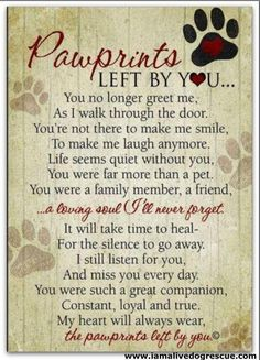 Beautiful words of sympathy for the loss of a dogs or cat. wall plaque featuring our Pawprints Left by You poem written by Teri Harrison. Our pet loss poem is the ideal gift for those coping with the loss of a pet. Pet Loss Quotes, Lost Dog Quotes, Pet Quotes Cat, Chihuahua Quotes, Cat Qoutes, Dachshund Quotes, Schnauzers, Dachshunds, Beagles