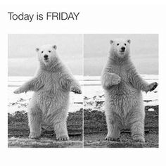 Oh yeah... And an exciting one! #friday