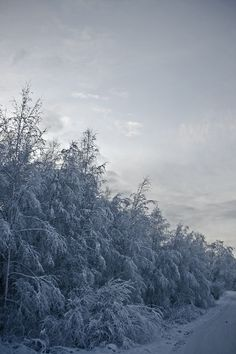Sininen talvi.