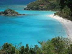 Trunk Bay  St. John's V.I.