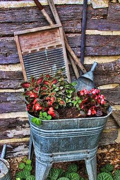 Well, if I cannot find an old wheelbarrow for same...